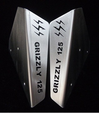 Picture of A ARM GUARDS GRIZZLY 125