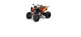 Picture for category Yamaha Raptor 250